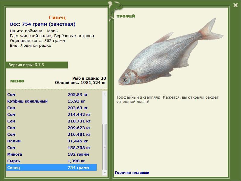 рыбалка на березовых островах финского залива