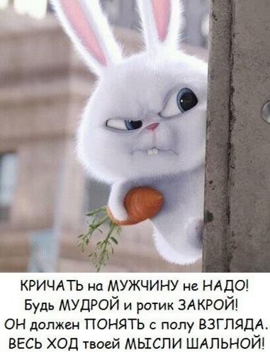 http://forumimage.ru/uploads/20170203/148610544525929320.png