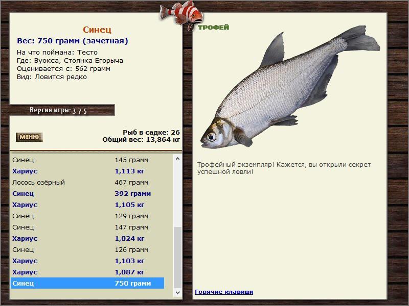 Синец атомная рыбалка 2