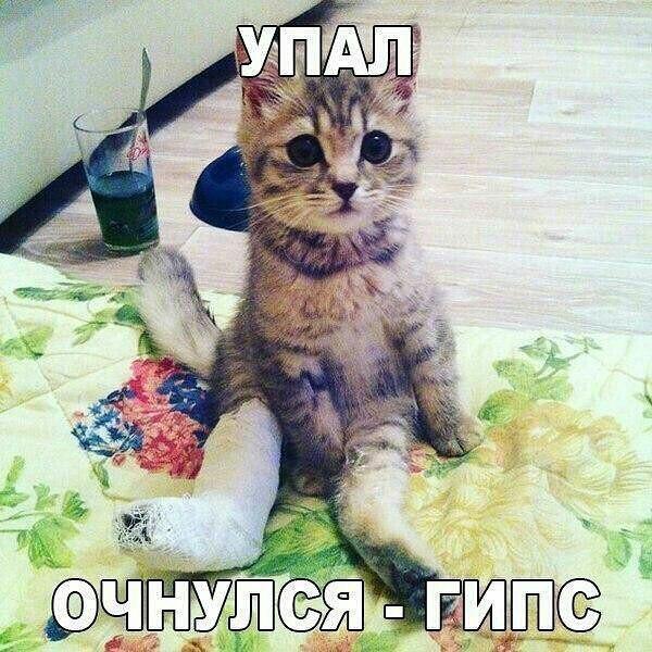 http://forumimage.ru/uploads/20170409/149177265820045865.jpg