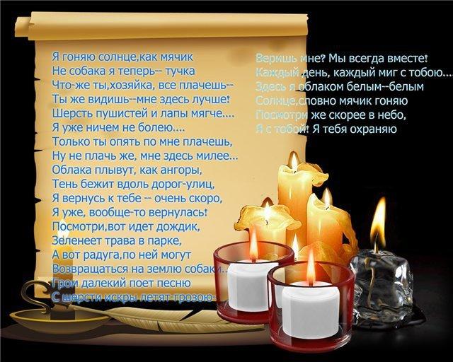 http://forumimage.ru/uploads/20170418/149251546558995599.jpg