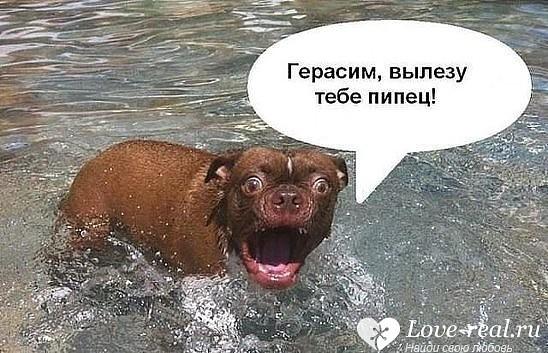 http://forumimage.ru/uploads/20170420/149265982032205340.jpg