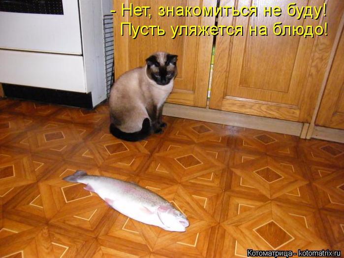 http://forumimage.ru/uploads/20170421/149281047960379833.jpg