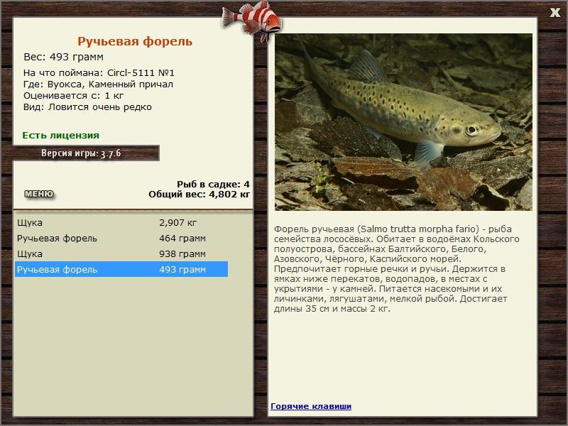 вуокса рыбалка форель
