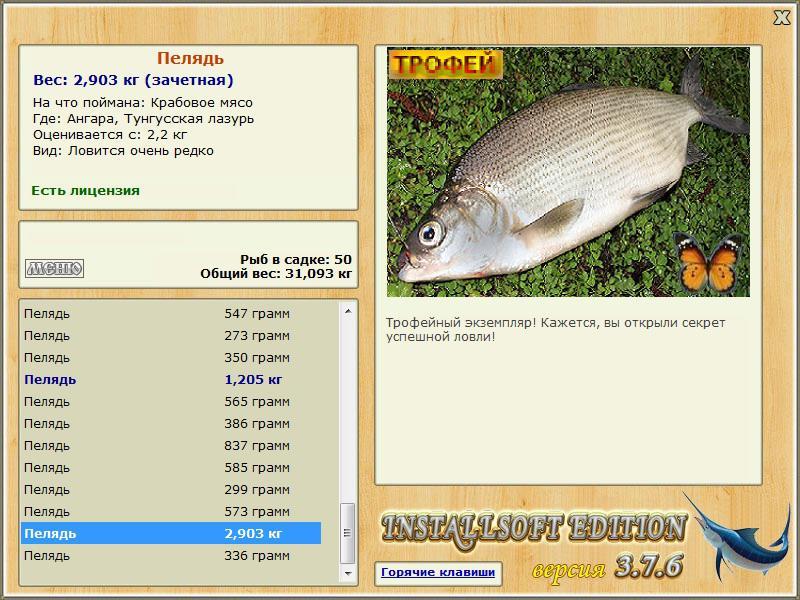 Тунгусская лазурь
