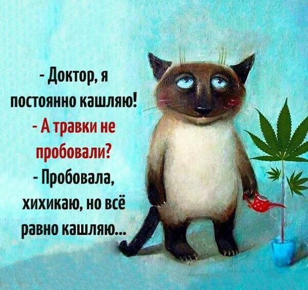 http://forumimage.ru/uploads/20170511/149453309497935476.jpg