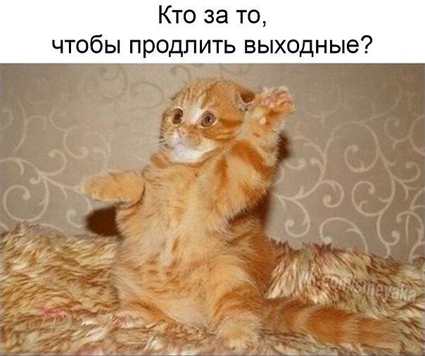 http://forumimage.ru/uploads/20170604/14965937060162929.jpg