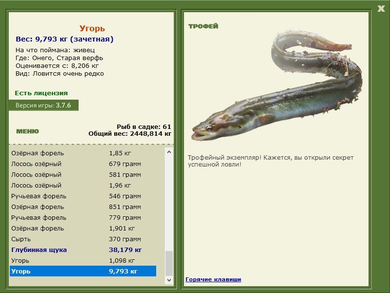 ловил рыбу на угре