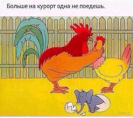 http://forumimage.ru/uploads/20170623/149821133206467774.jpg