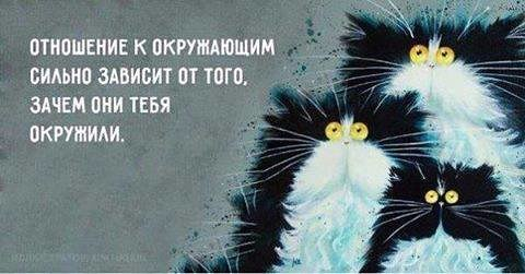 http://forumimage.ru/uploads/20170624/149832720797476295.jpg