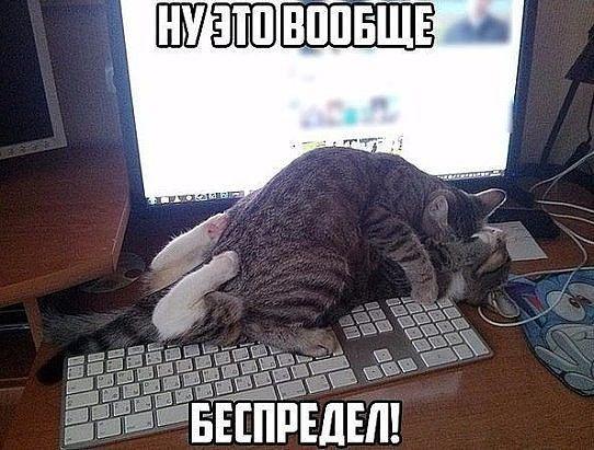 http://forumimage.ru/uploads/20170703/149907126435787787.jpg