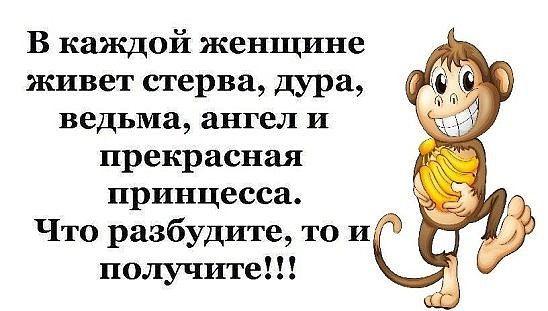 http://forumimage.ru/uploads/20170703/149907126774549331.jpg
