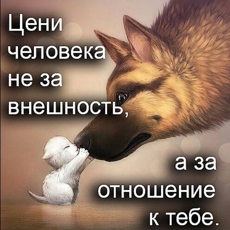 http://forumimage.ru/uploads/20170711/14997640533797364.jpg