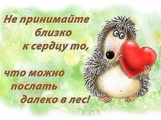 http://forumimage.ru/uploads/20170803/150178026612609972.jpg