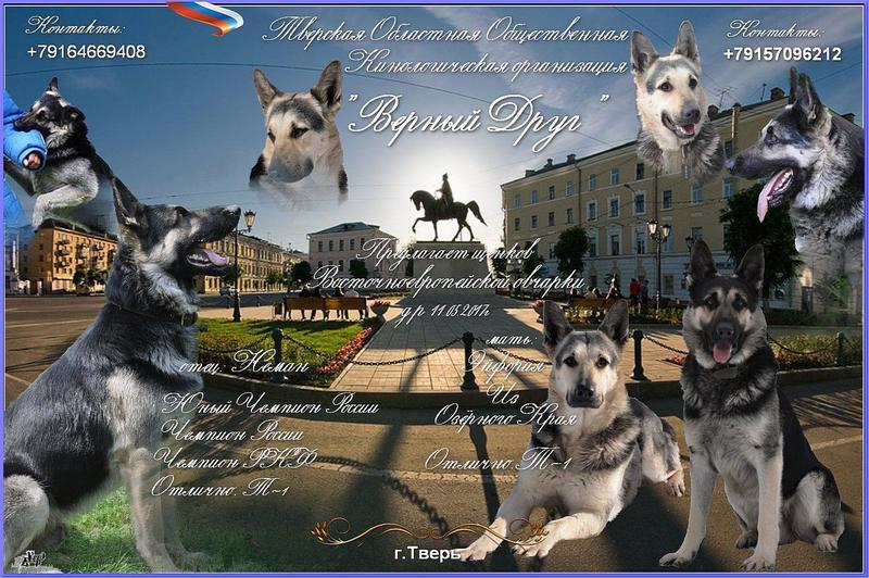 http://forumimage.ru/uploads/20170807/150212460495628984.jpg
