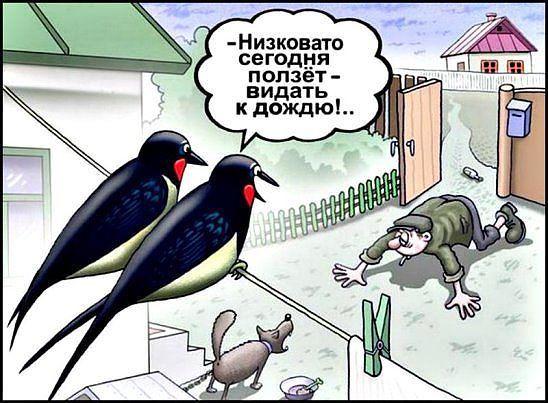 http://forumimage.ru/uploads/20170813/150265757076094884.jpg