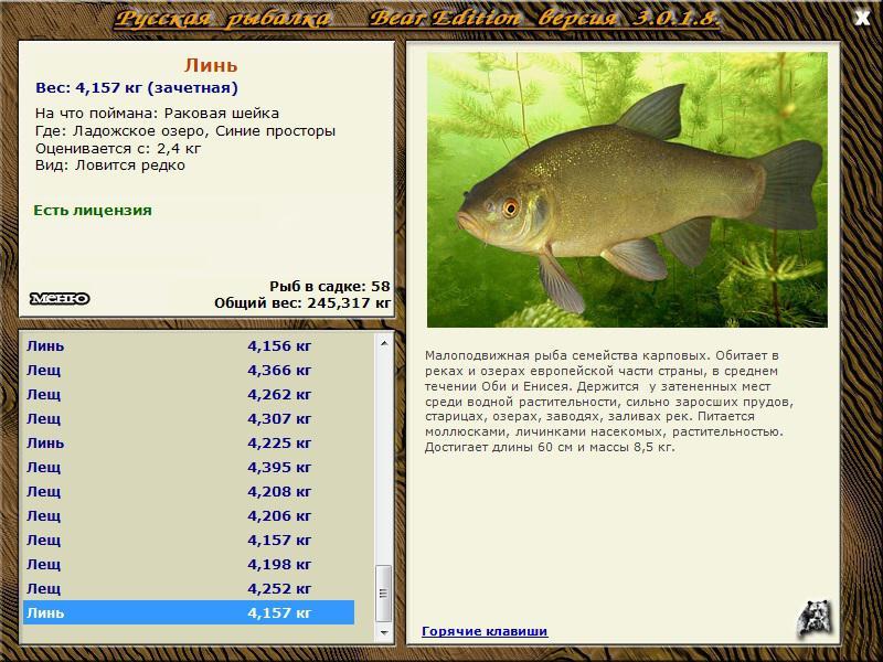 моему, они одинаковые • Русская Рыбалка 3 Bear Edition