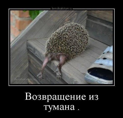 http://forumimage.ru/uploads/20170825/150369270927196830.jpg