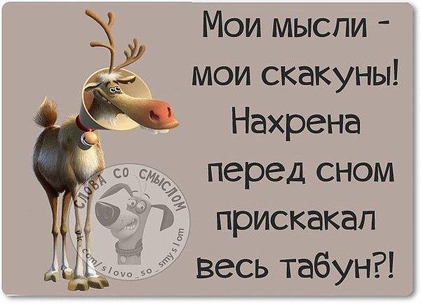 http://forumimage.ru/uploads/20170928/150662663223975623.jpg