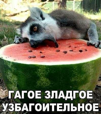 http://forumimage.ru/uploads/20171010/150765794554858531.jpg