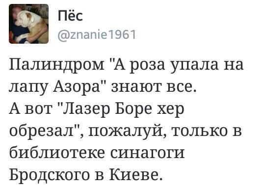 http://forumimage.ru/uploads/20171031/150946541136087679.jpg