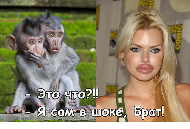 http://forumimage.ru/uploads/20171114/151069051035541481.jpg