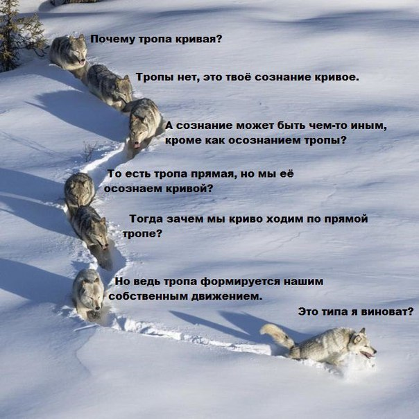 http://forumimage.ru/uploads/20171115/151074973631994019.jpg
