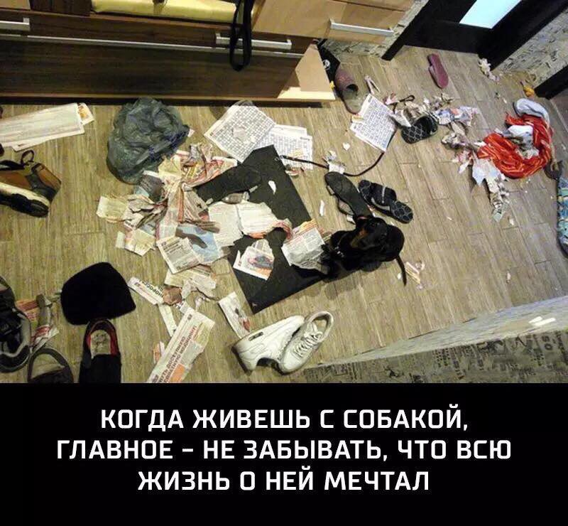 http://forumimage.ru/uploads/20171116/151085340581416422.jpg