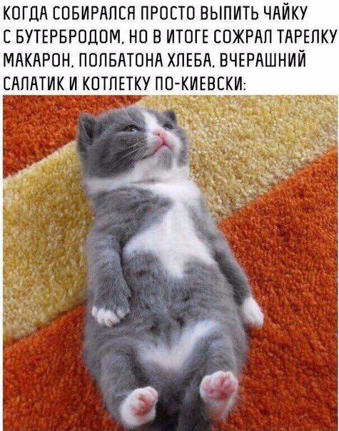 http://forumimage.ru/uploads/20171123/151146623207439730.jpg