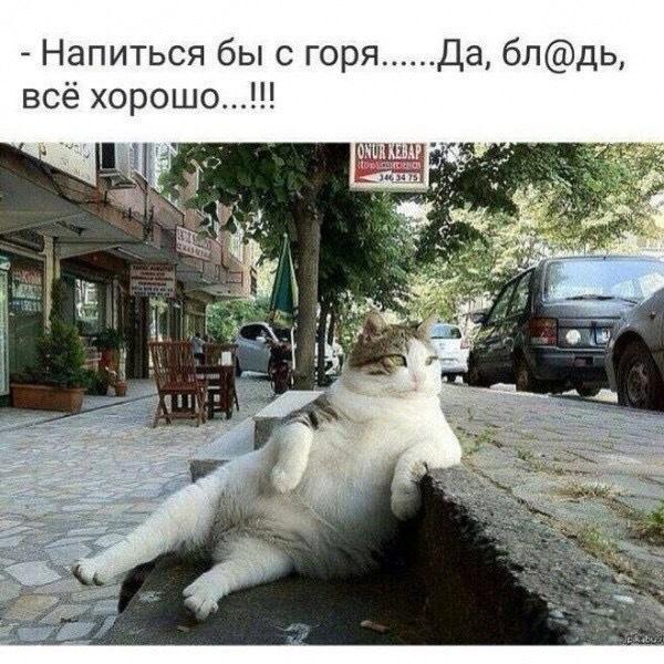 http://forumimage.ru/uploads/20171123/151146623731176922.jpg