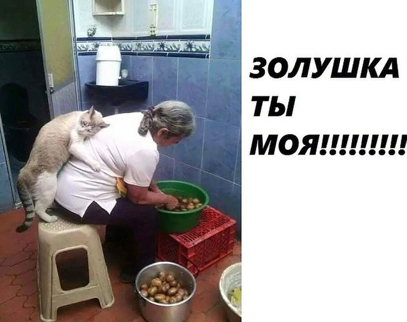 http://forumimage.ru/uploads/20171216/15134497988754114.jpg