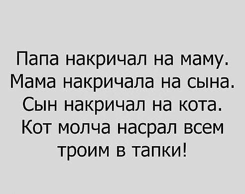 http://forumimage.ru/uploads/20171218/151358927758101034.jpg