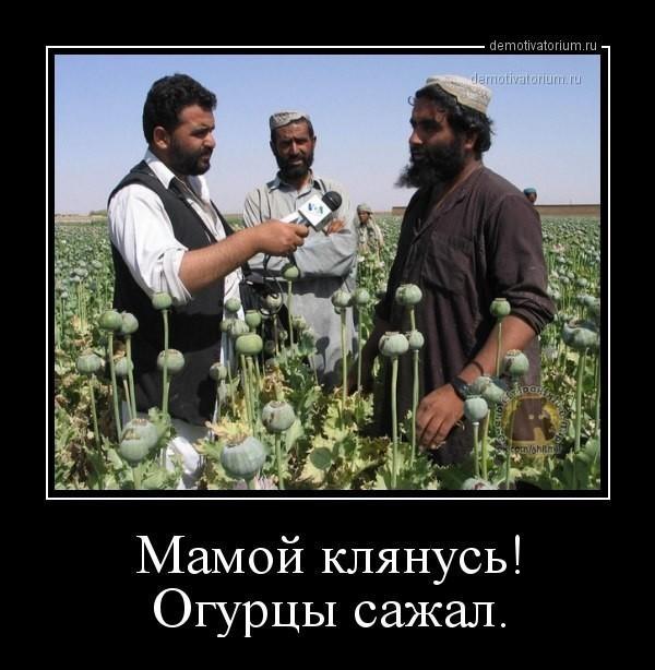http://forumimage.ru/uploads/20171221/151387093713471070.jpg