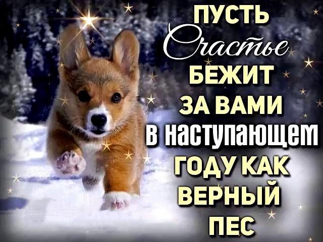 http://forumimage.ru/uploads/20171231/151475583910052122.jpg