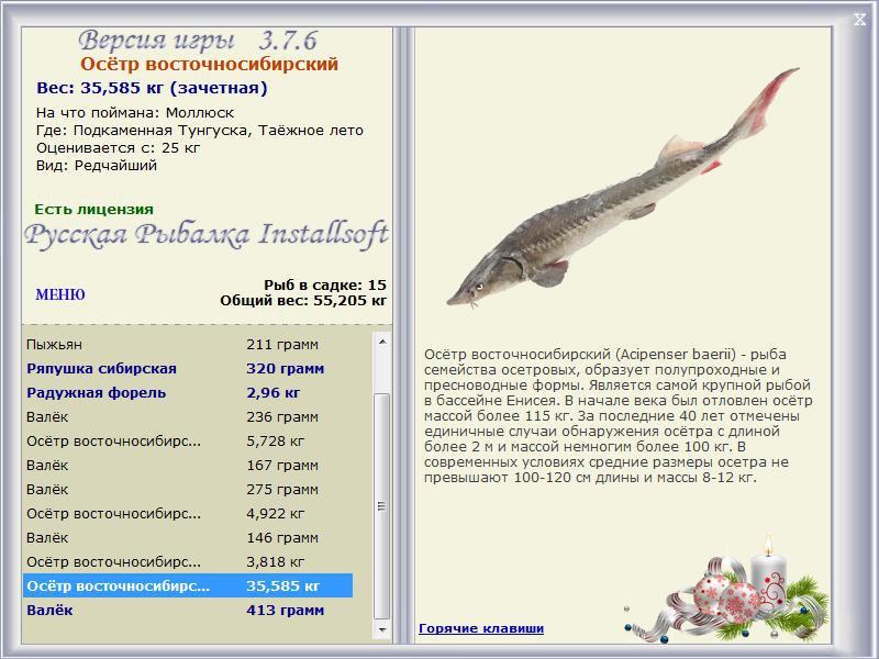 Подкаменная Тунгуска