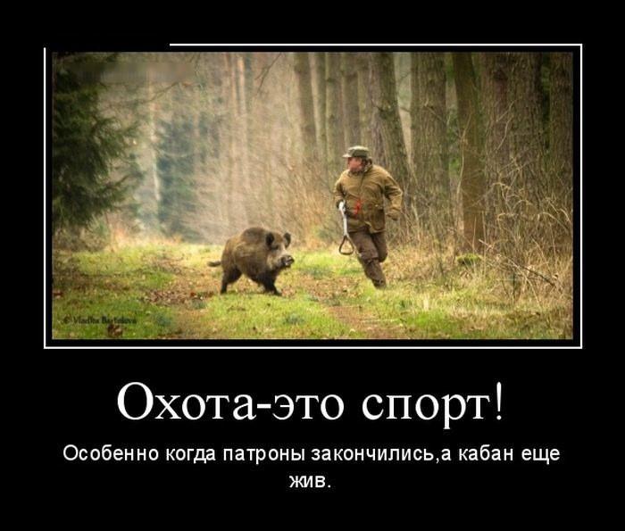 http://forumimage.ru/uploads/20180109/151549174662094258.jpg