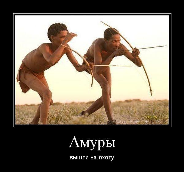 http://forumimage.ru/uploads/20180109/151550065971714584.jpg