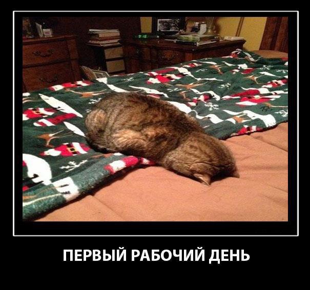 http://forumimage.ru/uploads/20180109/151551502021747473.jpg