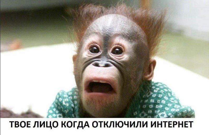 http://forumimage.ru/uploads/20180114/151596201231465924.jpg