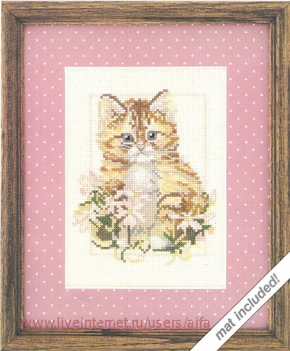 Коты, кошечки и котята