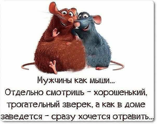 http://forumimage.ru/uploads/20180131/151736074952127995.jpg