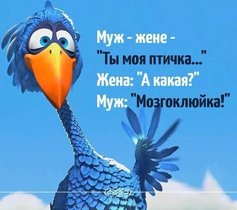 http://forumimage.ru/uploads/20180217/15188538627611258.jpg