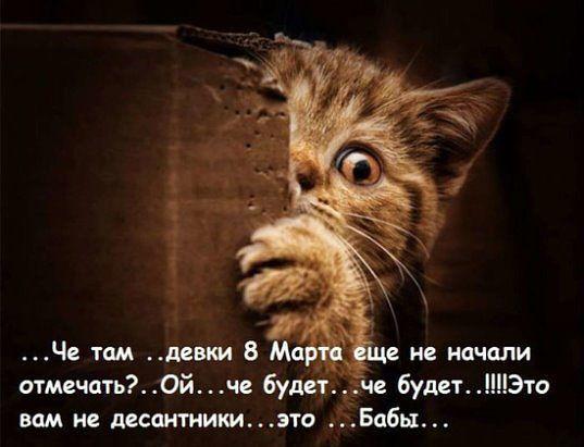 http://forumimage.ru/uploads/20180306/152034189266696214.jpg