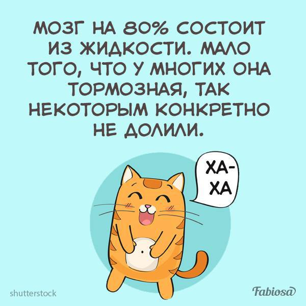 http://forumimage.ru/uploads/20180313/152094856618461655.jpg
