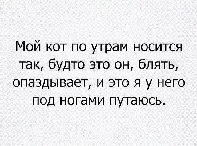 http://forumimage.ru/uploads/20180517/152655710853841597.jpg