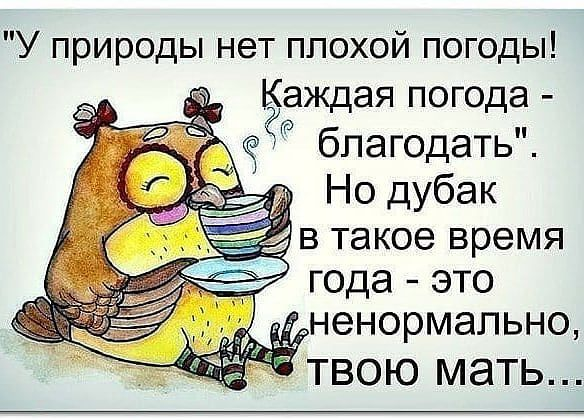 http://forumimage.ru/uploads/20180607/152836492556797969.jpg
