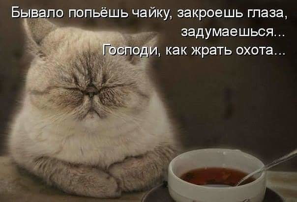 http://forumimage.ru/uploads/20180718/153193450961593034.jpg