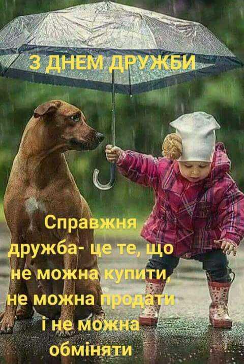 Міжнародний день дружби - Форум села Козацьке