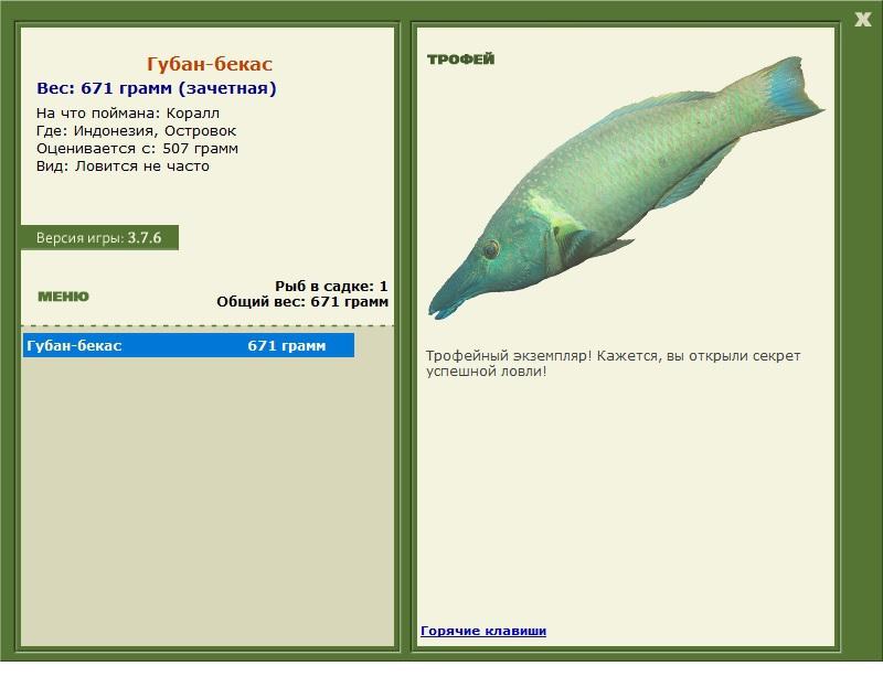 бекас • Рыбы • РУССКАЯ РЫБАЛКА
