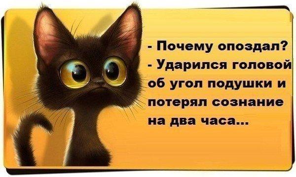 http://forumimage.ru/uploads/20180906/153621473423191724.jpg